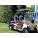 Dossier Disney Golf